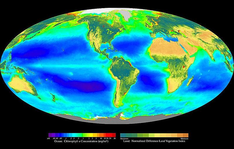 Chlorophyll Map