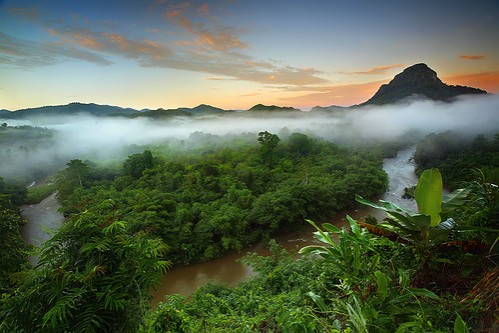 clouds above rainforest