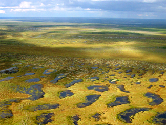 Vast terrain with subterranean peat in western Siberia
