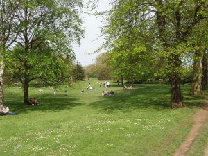 Picnics in Hyde Park, London.