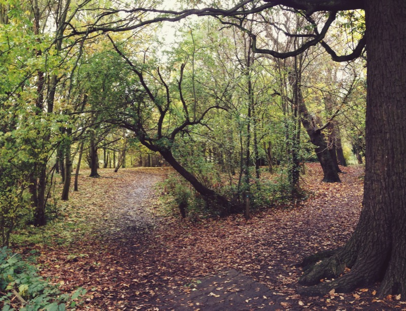 Cannon Hill Park, Merton.
