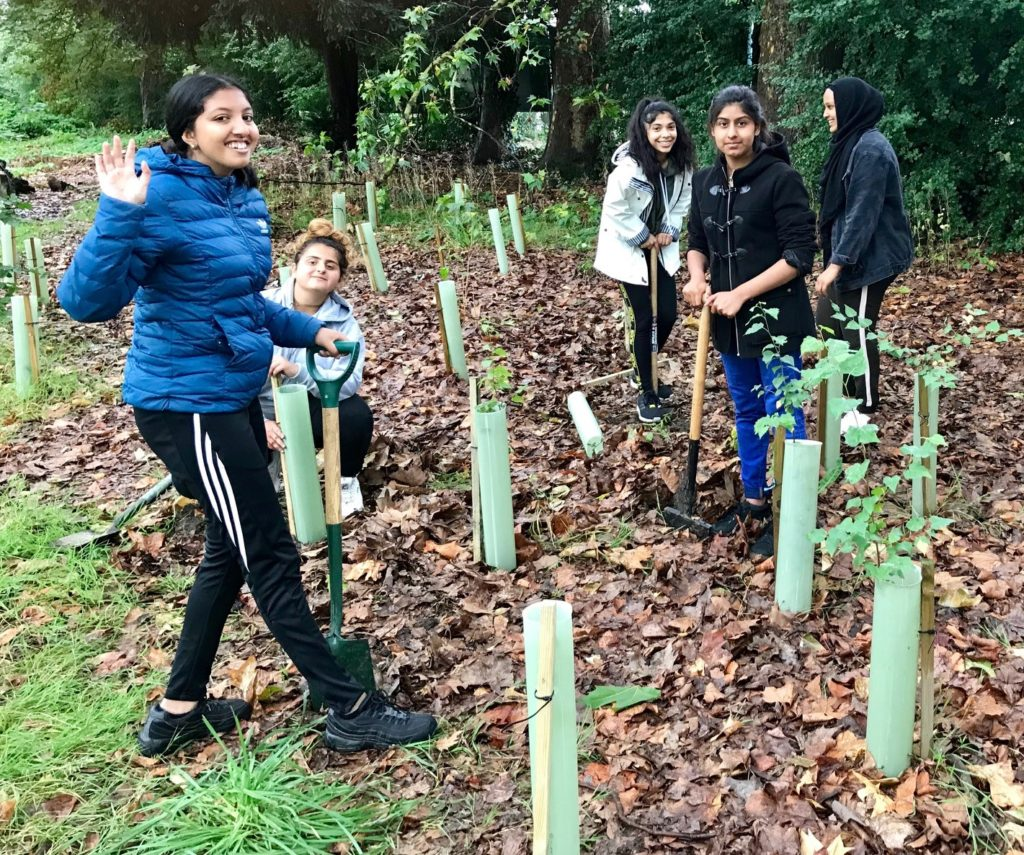 teenagers planting trees